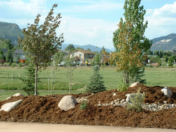 1000 images about berms on pinterest gardens front yards and small